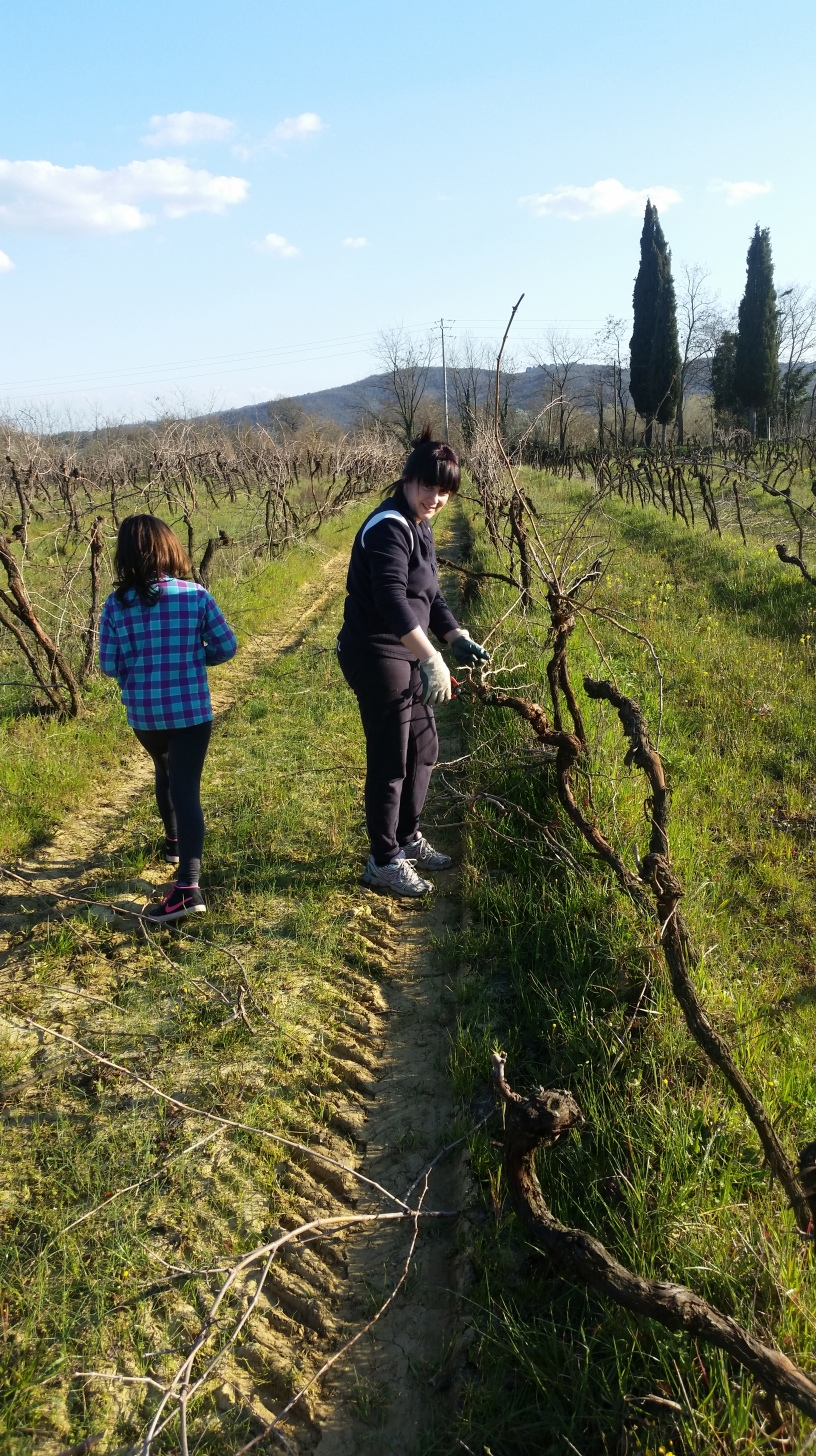 Marusca is working in the vineyard