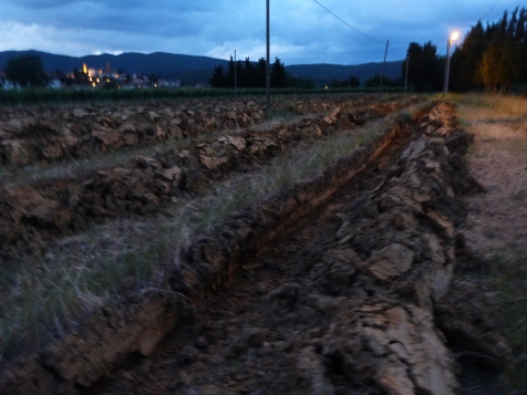 Step 4 The ground after the first plowing - June 2016 - Cappannelle - Castiglion Fibocchi