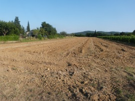 ground ready for plowing