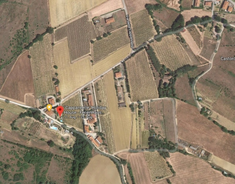 From Google Map The New Vineyard in Cappannelle is almost visible.